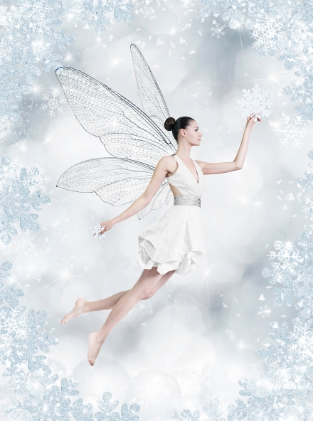 xmas fairy